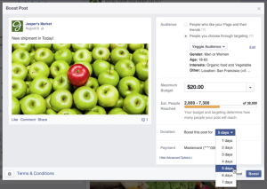 What it looks like to go through the Facebook post boosting process