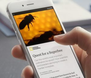 Browsing a Facebook Instant Article on a smartphone